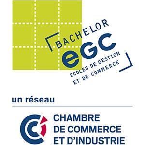Réseau EGC CCI