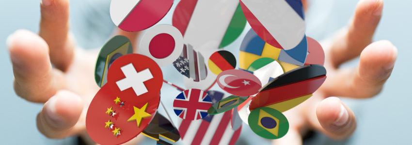 Le stage à l'étranger avec l'EGC Normandie